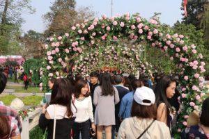 Cảnh người đông đúc tại lễ hội hoa hồng Bulgari