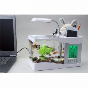 Bể cá phong thủy mini có thiết kế nhỏ gọn và không tốn diện tích khi trưng bày