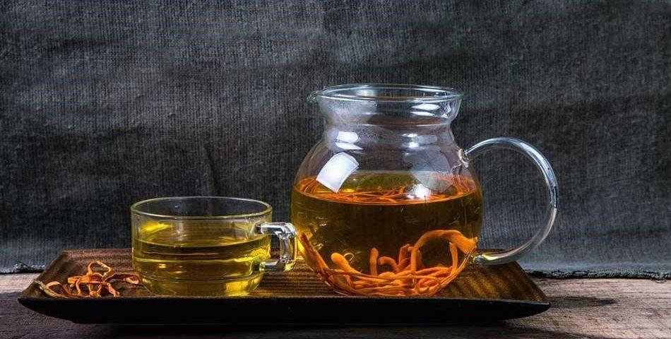 Đông trùng hạ thảo hãm trà uống